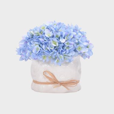 追梦-蓝色绣球盆花-小