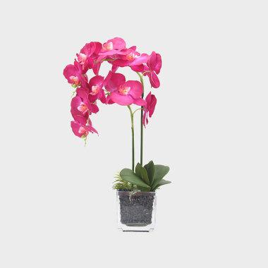 垂眸-玻璃鍍銀邊花器紫色蝴蝶蘭